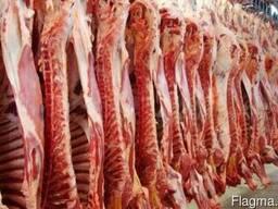 Мясо говядины Курица