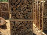 Beech Firewood - фото 1